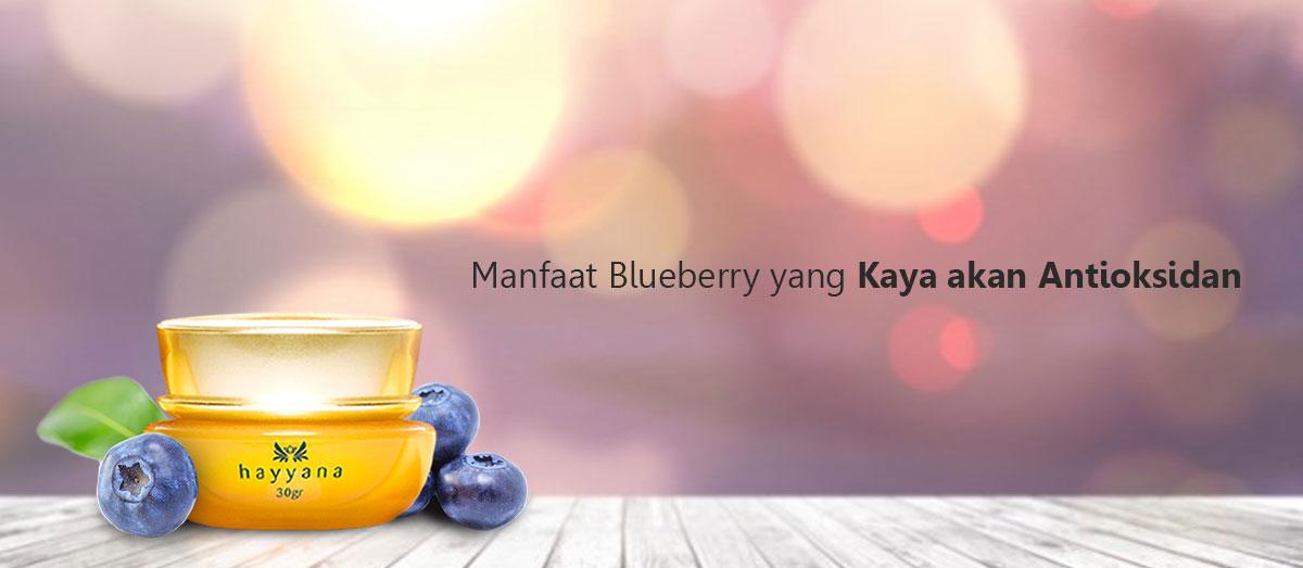 Manfaat Blueberry Yang Kaya Akan Antioksidan